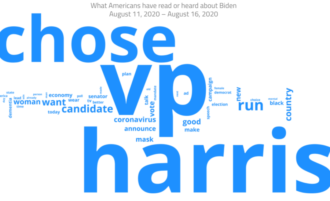 Harris dominated the conversation in the lead up to the convention (CNN)